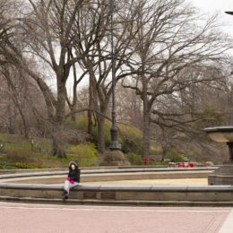 Social distancing in Central Park