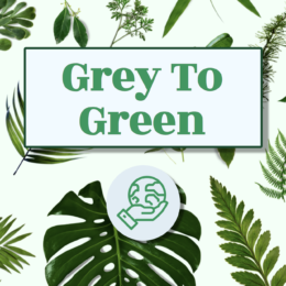 grey to green logo