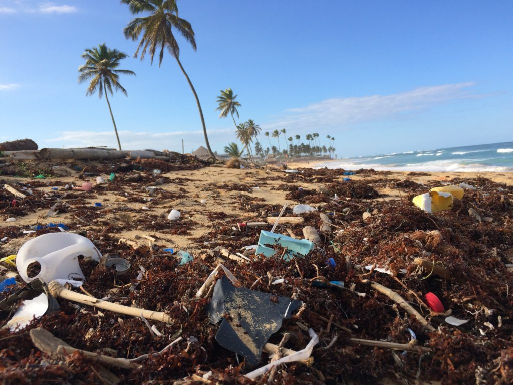 plastic waste littered on beach with palm trees in the background