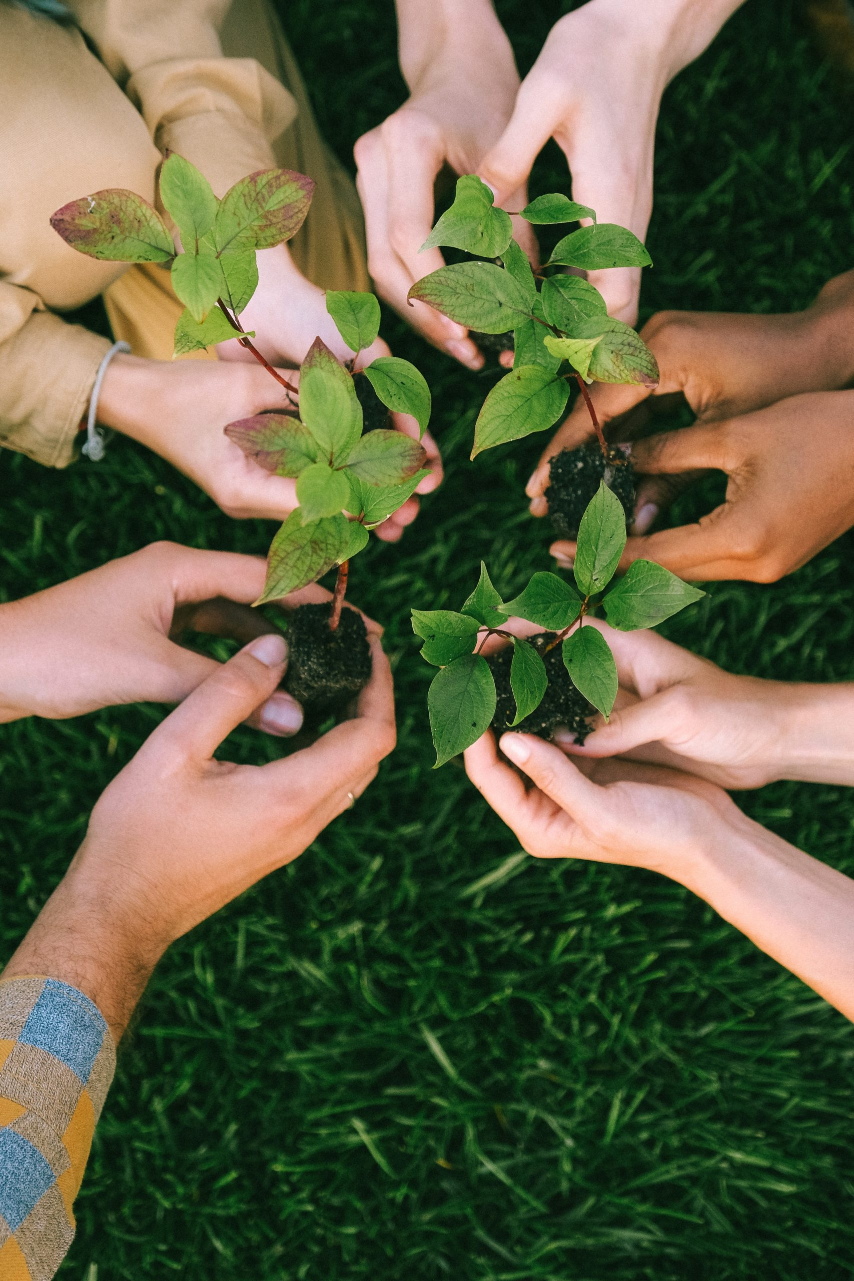 National Campaign mobilizes partners and volunteers to restore our earth | Earth Day
