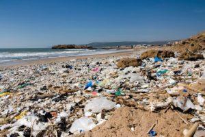 plastics lining beach