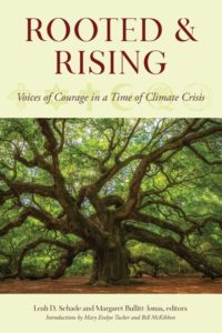 rooted and rising book